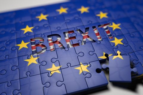 Cozma Consultants Brexit pasaport